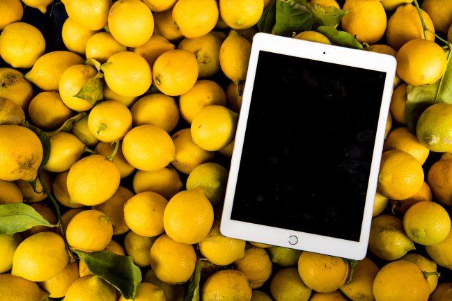 abundance-farming-fresh-927805.jpg